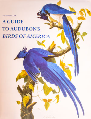 book cover: A Guide to Audobon's Birds of America