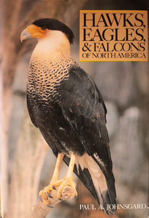 book cover: Hawks, Eagles, and Falcons of North America
